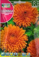 Körömvirág Petunias, Calendula, Pineapple, Orange, Fruit, Sprouts, Vegetables Garden, Pine Apple