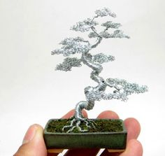 I'm really enjoying the color and form of these tiny bonsai trees sculpted from copper by artist Ken To. While certainly not a new artform (we've covered wire trees here previously), I find To's work exceptional in its simplicity and focus on shape versus ornamentation w