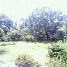 Diversão Areia Branca, Salvador, BA