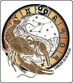 Jeden rakovina na horoskop kruhu.Na horoskop kruhu jsou symboly ze všech znamení zvěrokruhu na bílém pozadí.Grafické vektorové ilustrace.