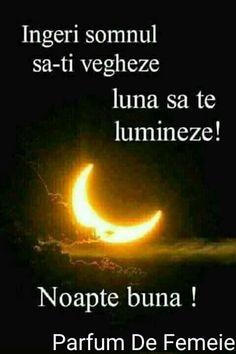 Nicu, Motto, Good Night, Have A Good Night, Mottos