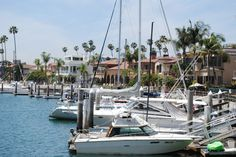 Alamitos Bay, Long Beach California