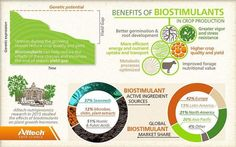 The benefits of biostimulants in crop production