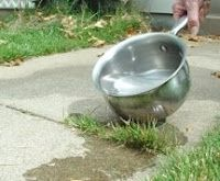 Who knew? Boiling water kills grass & weeds.  Great for sidewalks & pavers.