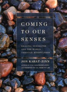 Coming to Our Senses: Healing Ourselves and the World Through Mindfulness by Jon Kabat-Zinn, http://www.amazon.com/dp/0786867566/ref=cm_sw_r_pi_dp_UnzDpb15MXPH4