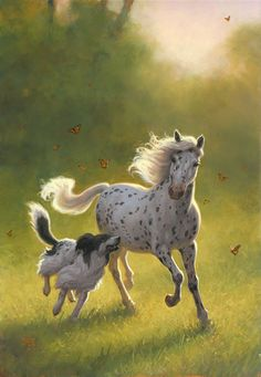 Doesn't get any better than this.An Appaloosa, Border Collie and Butterflies.A beautiful sight on a Summer Southern afternoon! Horses And Dogs, Animals And Pets, Cute Animals, Beautiful Horses, Animals Beautiful, Tier Fotos, Mundo Animal, Horse Love, Horse Art