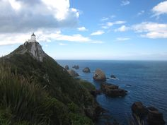 Nugget Point - New Zealand