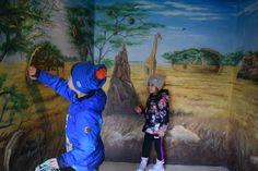 Through Safari Safari, Painting, Art, Zoology, Italia, Rome, Art Background, Painting Art, Kunst