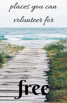 Learn how to find free volunteer opportunities all over the world #travel #volunteer