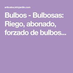 Bulbos - Bulbosas: Riego, abonado, forzado de bulbos...