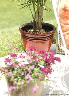 Better Homes and Gardens @ Walmart has plants and flowers! This Bombay planter is great for large and small plants alike.