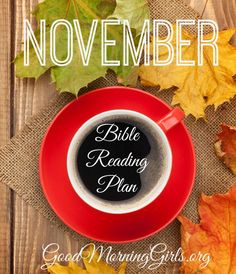 November has arrived!! I love the month of November! The cool crisp Ohio air and crackling leaves beneath my feet put a spring in my step. I also love our reading plan for this month. Genesis has taught me SO much. This month we finish Genesis and move into Psalms. Some of you asked why we are not starting at Psalm 1 (good question!). The reason is because we read Psalm 1 & 2 in September (see my post here). So we will begin at Psalm 3 on November 24th and then continue on in December in…