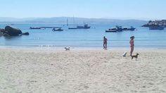 San Vicente do mar . O grove. Playa canina o espiño.