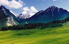 Livingston-Montana