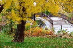 Elizabeth Park, Trenton Michigan