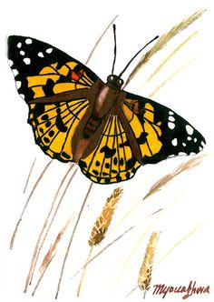 ACEO Limited Edition 2/25- Autumn butterfly, Art print of an original gouache by Anna Lee, Gift for housewarming, Miniatrue painting