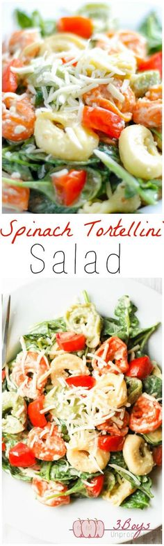 Spinach And Tortellini Salad: The Perfect Balance Of Yummy Healthy. Complete Wit… Spinach And Tortellini Salad: The Perfect Balance Of Yummy Healthy. Complete With A Delicious And Easy Homemade Dressing That Comes Together In Minutes Summer Recipes, New Recipes, Vegetarian Recipes, Healthy Recipes, Delicious Recipes, Recipies, Tasty, Pasta Recipes, Salad Recipes