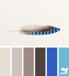 feathered tones- Voor meer kleuren en inspiratie kijk ook eens op http://www.wonenonline.nl/interieur-inrichten/kleuren-trends-2014/