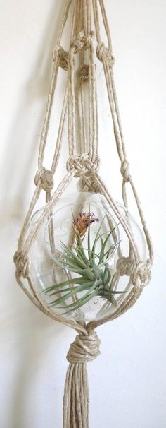 Macrame Plant Hanger - Glass bowl with air plant.