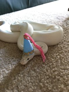 """He sure does make a pretty princess"" 