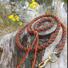 Bright fall color, emerald green and solar orange Mil. Spec. paracord leash. Happy hiking.