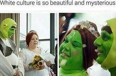 88 Best Shrek Is Love Shrek Is Life Images On Pinterest Shrek