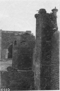 Medersa des Oudaïas  La Medersa des Oudaïas : nids de cigognes sur les remparts  1916.05.19