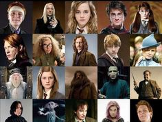 Not which Harry Potter character are you most like, which Harry Potter character would you enjoy most as your sibling. You may be most similar to Harry Potter, but it may be most fun for you to have Voldemort as a sibling.<< when Hagrid is Your sib😂😅