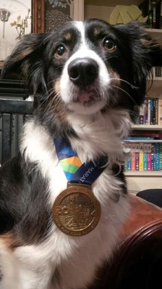 Daisy displaying her 2014 NYC Marathon Medal