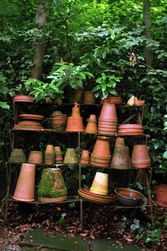 Need my own stash of pots, mossy and all