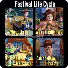 Festival cycle