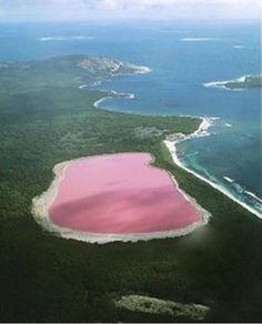 Le lac Hillier, un lac rose en Australie / pink lake, Australia Places Around The World, Oh The Places You'll Go, Places To Travel, Places To Visit, Around The Worlds, Travel Destinations, Tourist Places, Rosa See, Lac Retba