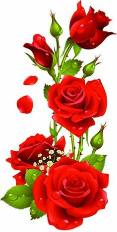 Rosred Once we approached the Flores & Prats organization, we wanted to target on the Rose Flower Wallpaper, Flowers Gif, Flower Backgrounds, Butterfly Wallpaper, Cut Flowers, Beautiful Flowers Wallpapers, Beautiful Rose Flowers, Beautiful Nature Wallpaper, Beautiful Flower Drawings