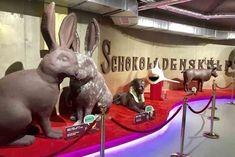 SCHOKOLADENMUSEUM WIEN mit Kindern - so war unser Ausflug Wiener Prater, Am Meer, Rabbit, Tours, Animals, Family Vacations, Road Trip Destinations, Viajes, Pictures