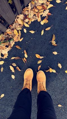 #timberlands #leaves #autum