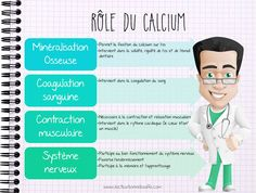 Calcium for dummies! - Dietetics Course # 12 - My WordPress Website Calcium Benefits, Health Benefits, Coconut Milk Nutrition, Strawberry Nutrition, Cheese Nutrition, Nutrition Shakes, Nutrition World, Stronger Teeth, Muscle Contraction