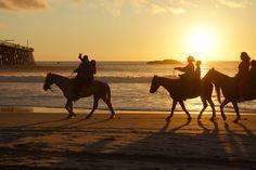 Horseback riding at sunset Rosarito Beach, Mexico