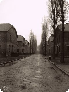 An Auschwitz street as it should be seen, forlorn, ghostly, abandoned, desolate and ultimately infinitely sad.