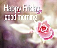 Happy Friday, Good Morning Art Quotes Funny, Super Funny Quotes, Funny Quotes About Life, Good Morning Friday, Good Morning Quotes, Happy Friday, Good Morning Picture, Morning Pictures, Tgif