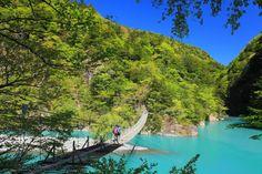日本のいいところって沢山ありますよね!最近は、googleのCMで竹田城が使われて有名になっていたり、富士山や白川郷が世界遺産に登録されたりと、世界からも日本の絶景が注目されています・・・! というわけで、今回は見に行くべき日本の絶景、ご紹介します! Japan Countryside, Japan Landscape, Beautiful Scenery, Japan Travel, Travel Destinations, Places To Go, River, Nature, Outdoor
