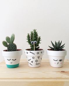 A imagem pode conter: 1 pessoa, planta, ar livre e natureza Cacman and TusGirl We are the cactus family 🌵 spreading Love is Our mission💞 Sharing our story as comics to let you know that true love exists❤️ Painted Plant Pots, Painted Flower Pots, Cactus Art, Cactus Flower, Indoor Cactus Plants, Cacti, Mini Toile, Decorated Flower Pots, Handmade Home Decor