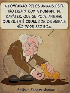Quem não gosta de animais com certeza boa pessoa não é...