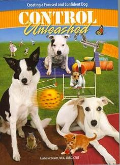 Control Unleashed:  Creating a Focused and Confident Dog