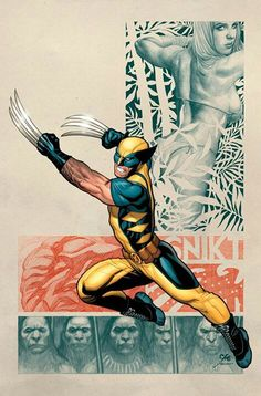 WOLVERINE by •Frank Cho