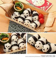 Panda Rice… for all my foodies out there!  You know who you are!