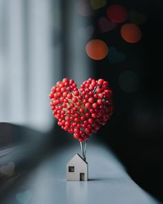 Home is where the ❤ is… – Cute Love Wallpaper Look Wallpaper, Nature Wallpaper, Mobile Wallpaper, Iphone Wallpaper, Love Wallpaper Backgrounds, Heart Wallpaper, Miniature Photography, Cute Photography, Mobile Photography