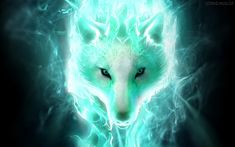 42 Inspirational Badass Wolf Wallpaper, 69 Black Werewolf Wallpapers On Wallpaperplay, 246 Best Wolf Wallpaper Images In Black Wolf Wallpaper Gallery, White Wolf Wallpapers Phone Hd Wallpaper Wolf Game. Tier Wallpaper, Wolf Wallpaper, Animal Wallpaper, Wallpaper Backgrounds, Wallpapers, Widescreen Wallpaper, Wolf Spirit Animal, Fox Spirit, Wolf Images
