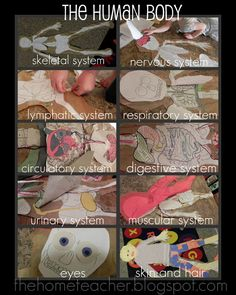 The Home Teacher: Human Body: Printables - this could be so much fun!