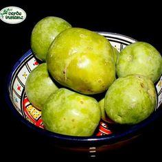 Matazanos from El Savador