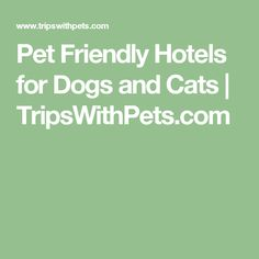 Pet Friendly Hotels for Dogs and Cats | TripsWithPets.com